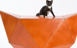Chiêm ngưỡng 13 ngôi nhà độc nhất vô nhị chỉ dành riêng cho họ nhà mèo