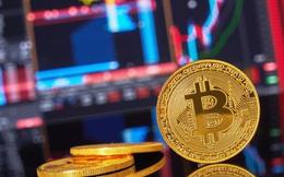 Bitcoin ngấp nghé 8.000 USD, Goldman Sachs vừa đưa ra lời cảnh báo nhưng rất nhiều nhà đầu tư sẽ vui mừng