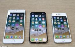 Sau iPhone X, hãy sẵn sàng chào đón iPhone XL với màn hình lớn hơn