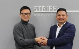 Tập đoàn thời trang Nhật Bản Stripe thâu tóm NEM fashion - chuỗi thời trang phụ nữ lớn thứ 2 Việt Nam