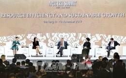 Tầm nhìn APEC sau năm 2020 - Thúc đẩy sử dụng hiệu quả các nguồn lực và công nghệ