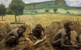 Tìm thấy xương người cổ đại nhất tại nơi bất ngờ