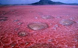 Bí ẩn hồ nước màu đỏ tươi như máu, la liệt xác chết hóa đá