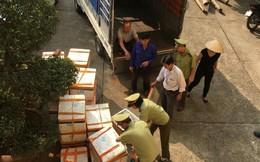 Quảng Ninh: Bắt giữ xe chở 1,5 tấn cá nhập lậu