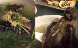 """Ớn lạnh với bát súp dơi: Món ăn kinh dị bậc nhất thế giới, thách thức cả những người """"sinh ra để ăn"""""""