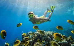 """Cebu – """"Thiên đường"""" tuyệt đẹp khiến bạn phải xách ba lô lên và đi"""