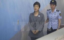 Lục soát nhà, văn phòng của cố vấn dưới thời cựu Tổng thống Park Geun-hye