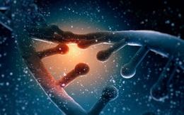 Đoạn video 10 giây này khiến cả hội trường khoa học tại Mỹ phải nín thở: Lần đầu tiên quá trình chỉnh sửa gen CRISPR được quay lại