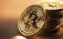 Black Friday cái gì cũng giảm giá, một mình bitcoin tăng giá phá đỉnh 9.000 USD