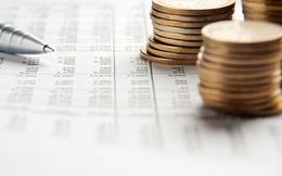 Việt Nam đã chi hơn 230.000 tỷ đồng trả nợ gốc và lãi vay