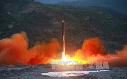 Đại sứ Mỹ kêu gọi tước quyền của Triều Tiên tại Liên hợp quốc