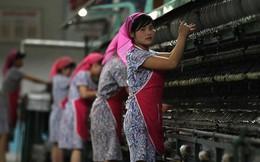 Cấm vận LHQ bắt đầu có hiệu lực, người lao động Triều Tiên ở nước ngoài sẽ đi về đâu?