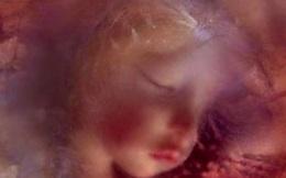 Sau gần 200 năm, xác ướp bé gái được bảo quản nguyên vẹn trong quan tài kính cũng đã có lời giải