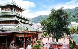 Thủ tướng đồng ý cho An Giang triển khai dự án Khu văn hóa tâm linh Bà Chúa Xứ - Cáp treo Núi Sam