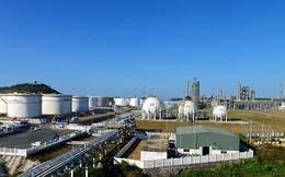 Chính phủ đồng ý bán cổ phần tại hàng loạt doanh nghiệp thuộc PVN