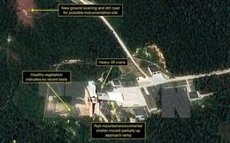 Hai tổng thống Nga và Mỹ điện đàm về vấn đề Triều Tiên