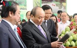 Thủ tướng Nguyễn Xuân Phúc dự Hội nghị xúc tiến đầu tư Đồng Tháp