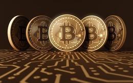 60.000 người tham gia thị trường bitcoin tại Việt Nam