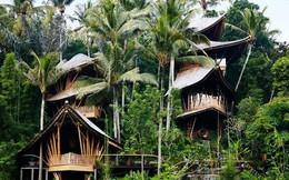 Ngôi nhà tầng làm bằng tre đẹp mê hồn