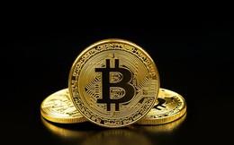 Dưới cơn điên loạn, giá trị bitcoin được định giá bằng 0 USD