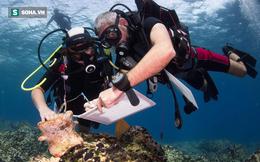 Thợ lặn phát hiện thấy 8 xác tàu La Mã hơn 2.000 năm ở vùng biển Hy Lạp