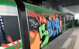 Thứ trưởng Bộ GTVT: Vẽ lên tàu đường sắt Cát Linh - Hà Đông là dấu hiệu phá hoại tài sản