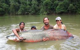 """""""Thủy quái"""" vùng Amazon"""