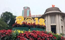 Đường Hà Nội trang hoàng rực rỡ trước thềm năm mới