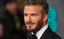 David Beckham đối mặt với cáo buộc trốn thuế hàng trăm triệu bảng Anh