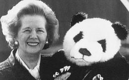 """Lý do """"bà đầm thép"""" từ chối đi chung máy bay với gấu trúc"""