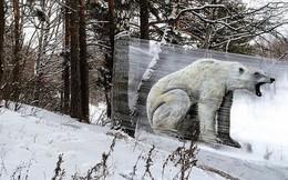 Cuốn nilon vào thân cây rồi vẽ vời, chàng họa sĩ đã làm nên tuyệt tác 3D sống động trong rừng