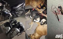 Nhóm trộm chó bị truy đuổi, quẳng ớt bột chống trả để bỏ trốn