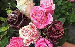 Gần 300.000 đồng cho một bông hồng phủ chocolate trong ngày Valentine