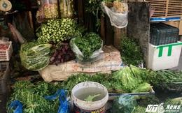 Rau tại Hà Nội tăng giá hơn 2 lần sau mưa lũ