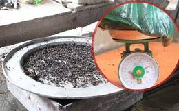 """[Video] Chuyện lạ: Ruồi đong bằng kg, người Hà Nội bẫy cả """"mâm"""" ruồi mỗi ngày"""