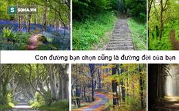 Có 6 con đường, bạn nghĩ con đường nào sẽ dẫn đến sự hạnh phúc?