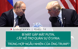 """Ông Trump """"bí mật"""" gặp ông Putin, cắt viện trợ cho phiến quân Syria: Trùng hợp ngẫu nhiên?"""