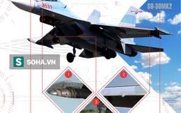 """Bằng mắt thường, làm thế nào để phân biệt """"tất tần tật"""" tiêm kích họ Su-27, Su-30 ?"""