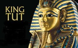 Phát hiện điều kỳ lạ trong quan tài bằng vàng ròng của Pharaoh Tutankhamen