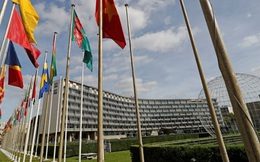Ai là người quyết định Mỹ rút khỏi UNESCO?