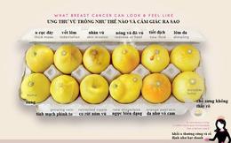 Dù không sờ thấy khối u nhưng có 4 dấu hiệu sau phải khám ung thư vú ngay kẻo muộn