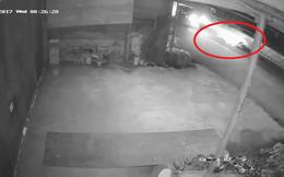 Người đàn ông nhặt rác lúc 0h và hành động gây phẫn nộ của tài xế ô tô
