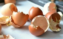 Cho vỏ trứng giã nhuyễn vào bình thủy tinh bị ố bẩn, bạn sẽ thu được kết quả bất ngờ