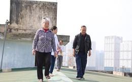 Chủ tịch Hà Nội yêu cầu kiểm tra vụ người dân đi trên mái nhà vì thang máy chung cư hỏng