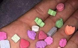 C47 nói về ma túy 'quả dâu tây' vào học đường