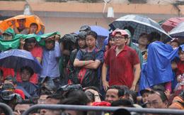 Lắp 11 màn hình LED trên phố đi bộ Nguyễn Huệ để xem trận chung kết U23 Việt Nam