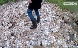 Tìm thấy núi tiền trị giá hơn 400 tỷ đồng nhưng lại không thể tiêu