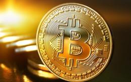Thị trường tiền ảo tiếp tục phục hồi - giá Bitcoin tăng 10%