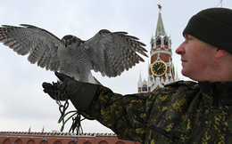 """Tiết lộ loại """"vũ khí"""" đặc biệt Nga dùng để đánh chặn UAV tấn công thủ đô Moscow"""