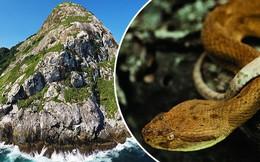 Hòn đảo xinh đẹp ẩn chứa một bí mật chết chóc đáng sợ mà người dân không được phép đến gần